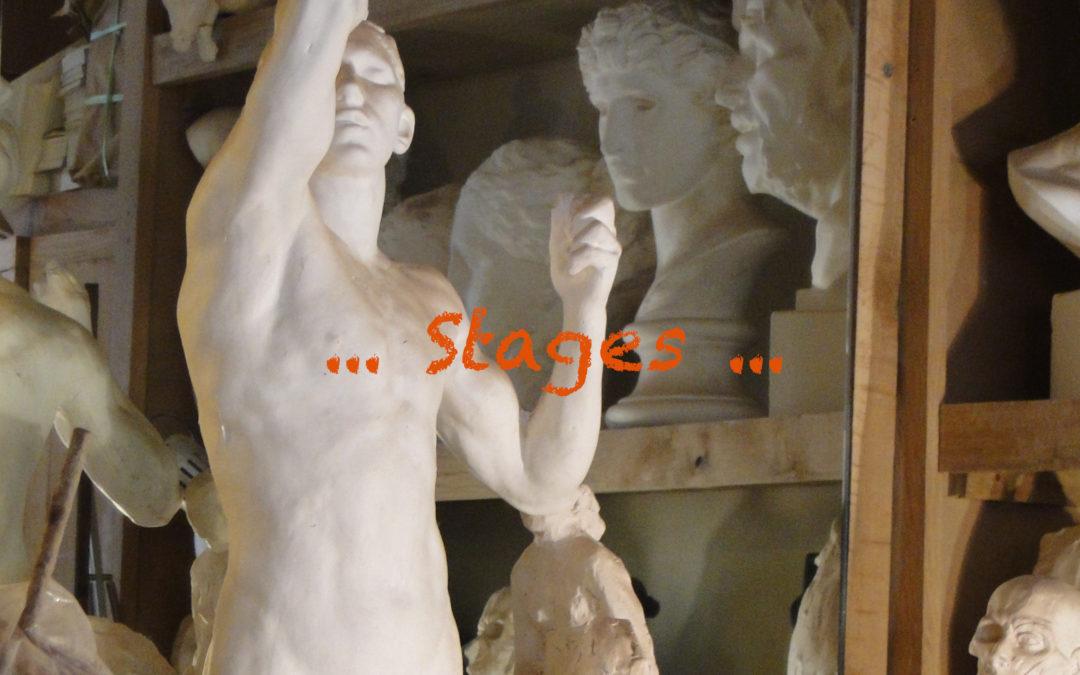Stages début 2020
